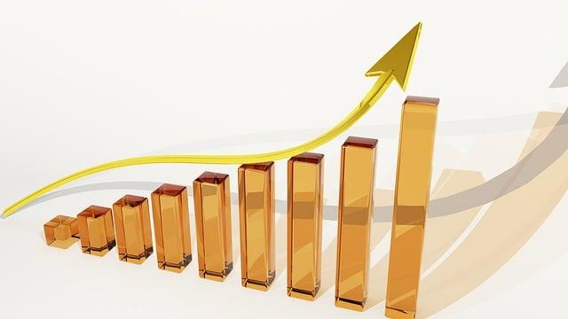 How Do Stocks Work (Investing Basics)